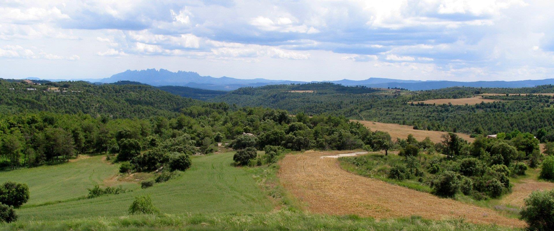 Catalunya rural
